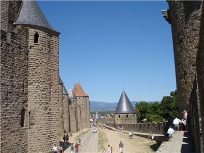 Lices in Carcassonne