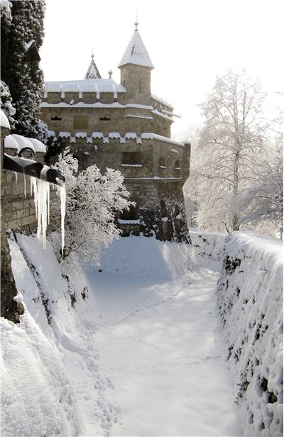 Lichtenstein Castle At Winter